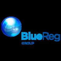 Logo BlueReg group_500px.png
