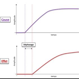 Dynamique des causes et effets